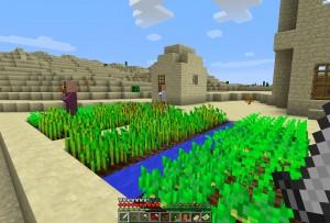 砂漠の村発見