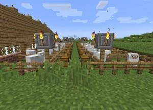 羊牧場の照明