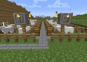 羊牧場の舗装