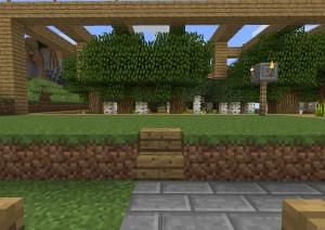 植林場の脇