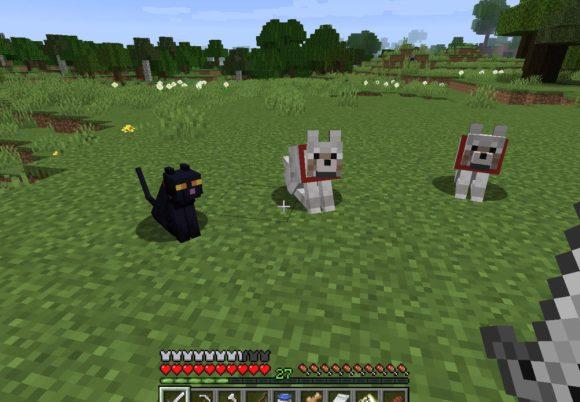 オオカミとクロネコ